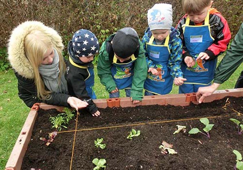 Aktion mit Pflanzen - Garten